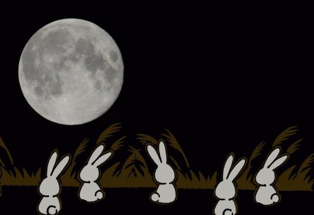うさぎと月