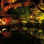 2017年 高台寺の紅葉の見ごろやアクセスやライトアップの時間は?