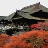 2017年清水寺の紅葉の見ごろや時期は?ライトアップの時間は?