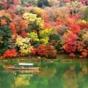紅葉の時期は2017年はいつ?京都の人気スポットはどこ?