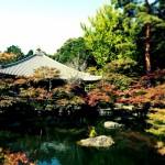 醍醐寺の紅葉2017年の見ごろやライトアップは?アクセス方法は?